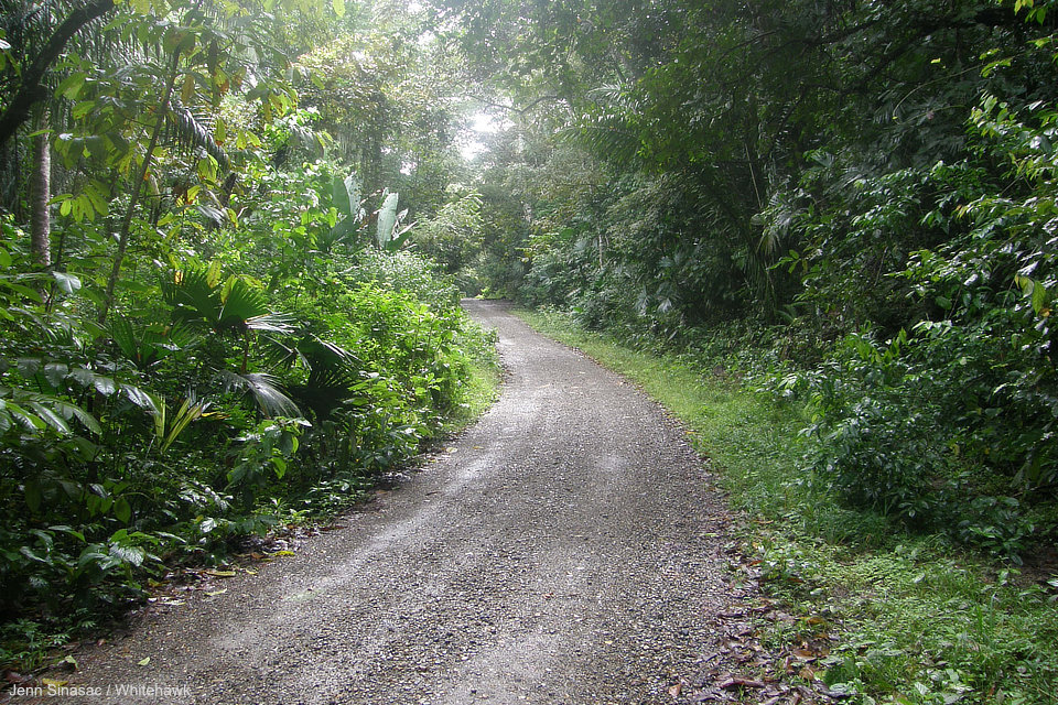 Pipeline Road Panama
