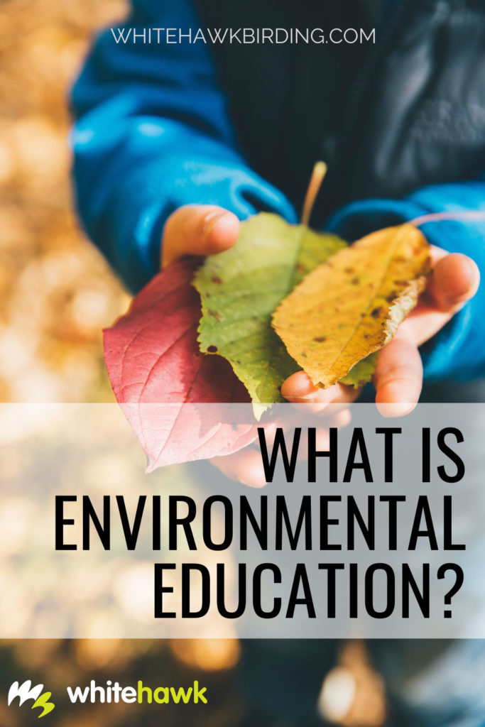 What is Environmental Education? - Whitehawk Birding: Environmental education connects us to nature in a way that promotes exploration and learning.